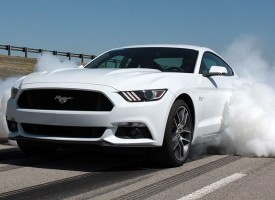 Ford Mustang 2015 : l'instrument à burnout