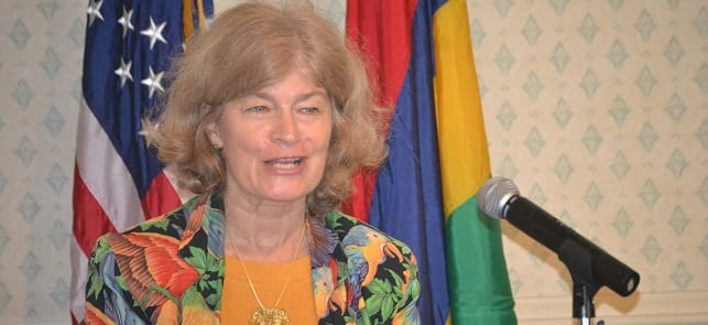 Going green: Mauritius and US to collaborate over Africa projects