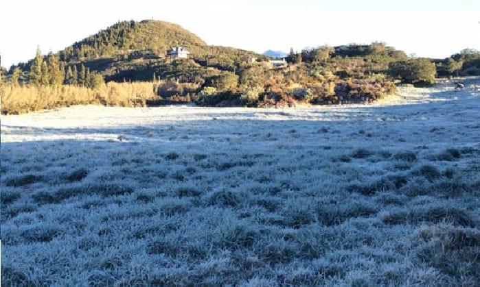 [La Réunion] La Plaine des Cafres se réveille sous du givre