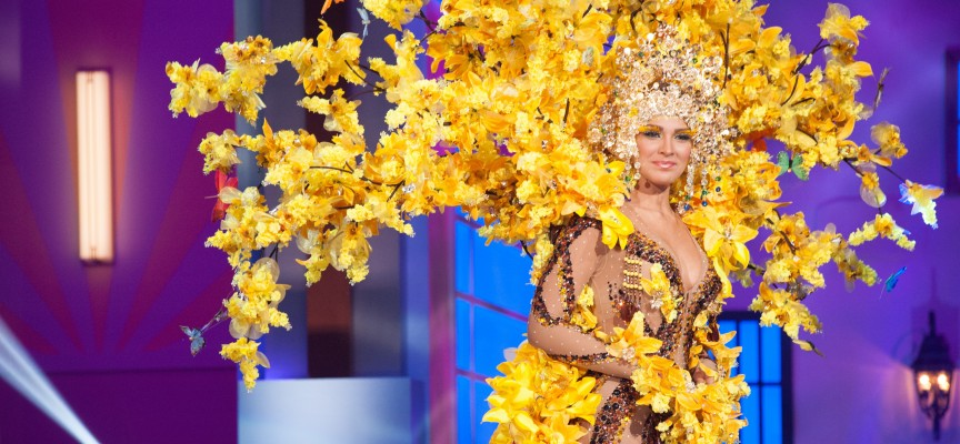 [Diaporama] Les costumes les plus insolites de Miss Univers 2015