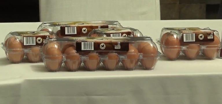 [Vidéo] Un label lancé pour promouvoir les œufs des petits éleveurs