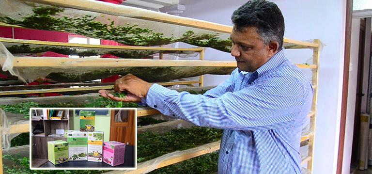 [Vidéo] Comment Vinay Kanhye a fait du «bred mouroum» un produit vendeur