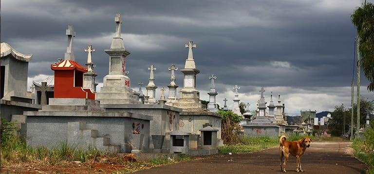 Profanation au cimetièrede Bois-Marchand:des caveaux pillés, quatorze cercueils emportés