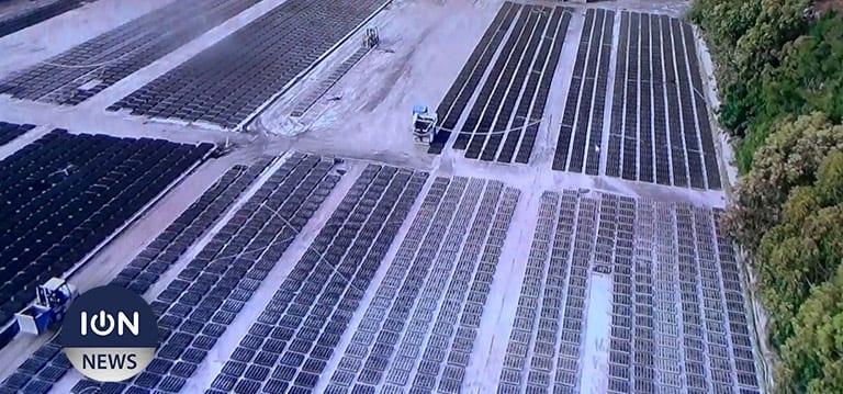 [Vidéo] L'UoM et le secteur privé se penchent sur le changement climatique