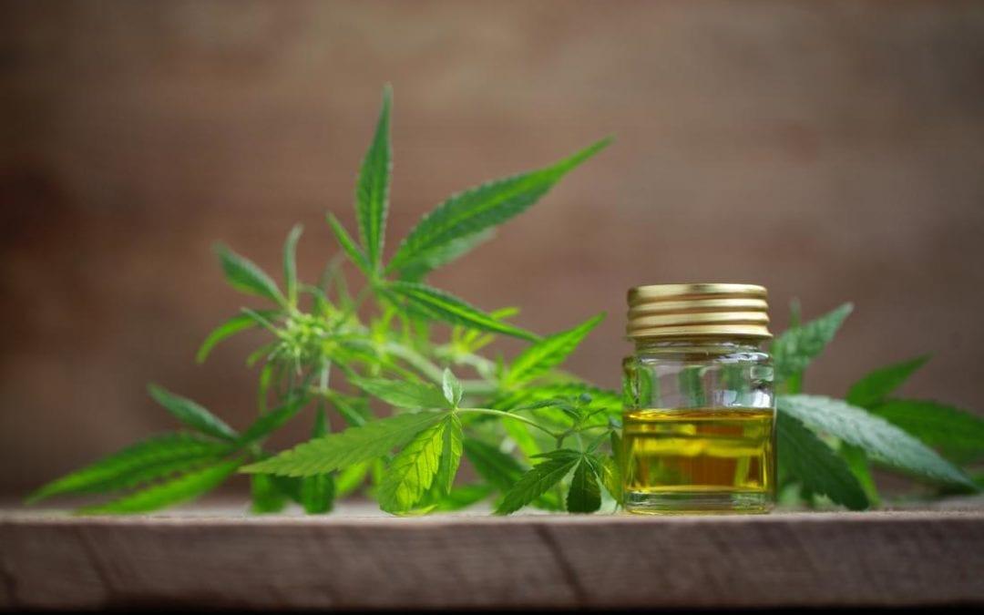 Introduction du cannabis médical à Maurice : Le ministère de la Santé dans l'attente d'un rapport