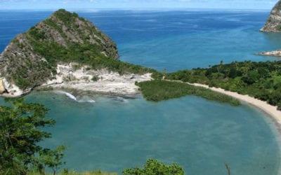 [Audio] La MCCI Business School veut accueillir plus d'étudiants de Mayotte