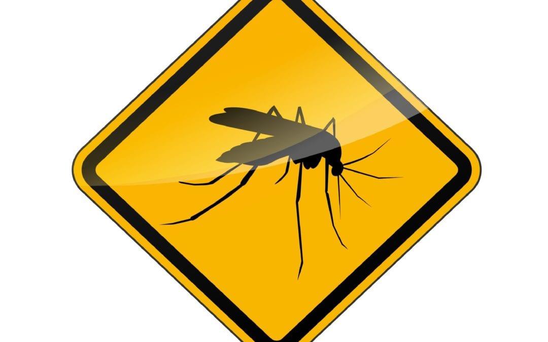 De nouveaux cas de dengue répertoriés durant le week-end, poussant le nombre à 27