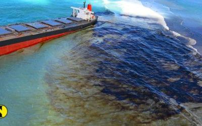 Post-MV Wakashio : Des projets pour répondre à l'urgence environnementale