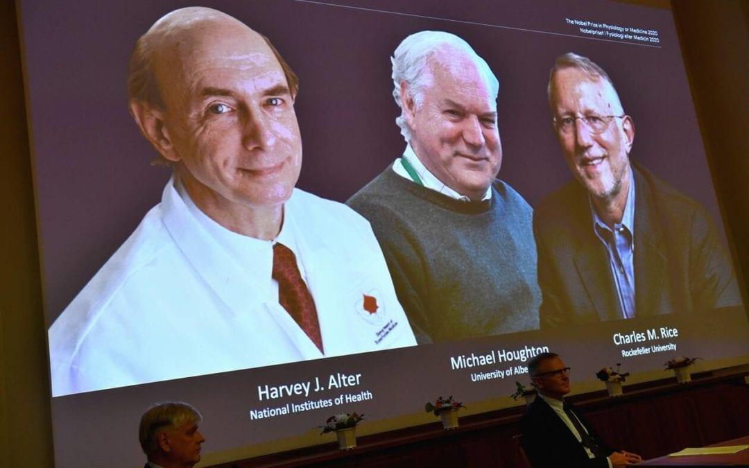 Le prix Nobel de médecine à trois découvreurs du virus de l'hépatite C