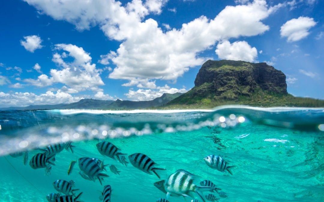 2 772 touristes ont visité l'île Maurice de janvier à mars 2021, contre 304 842 à la même période en 2020