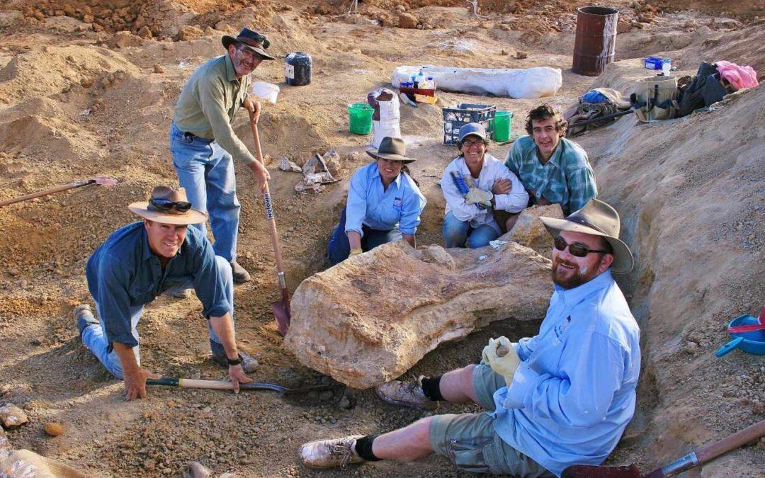 [Monde] Le plus grand dinosaure découvert en Australie identifié comme une nouvelle espèce