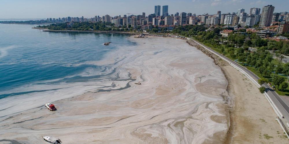 Les côtes turques envahies par la 'morve de mer'