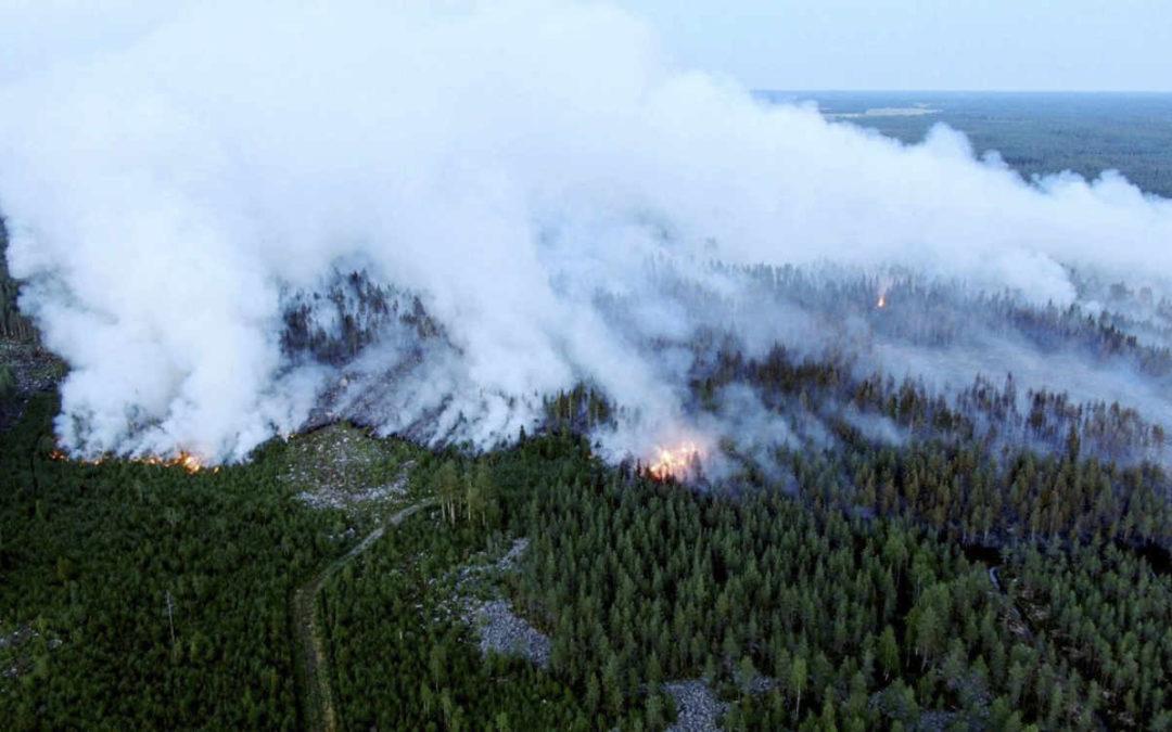 La Finlande subit son plus grand feu de forêt depuis cinquante ans