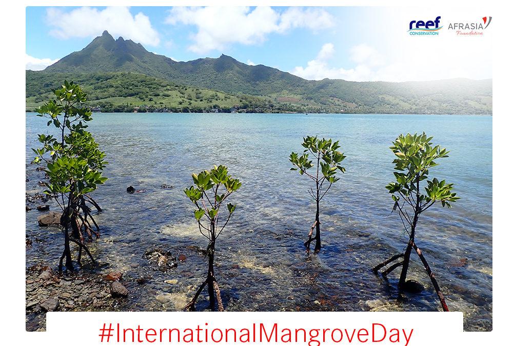 La Fondation AfrAsia contribue à hauteur de Rs 1,3 million au programme SOS Mangrove
