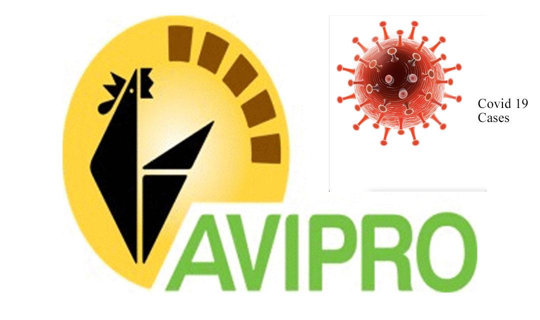 Covid-19 : Quatre employés d'Avipro testés positifs