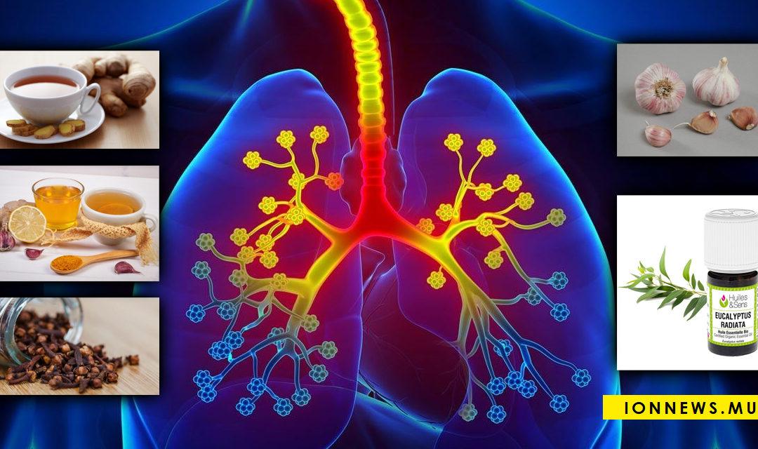 Sept plantes pour nettoyer vos poumons et lutter contre l'asthme