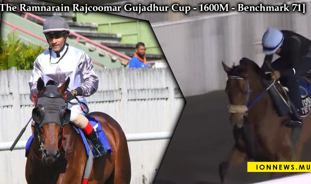 The Ramnarain Rajcoomar Gujadhur Cup : les apprentis mieux suivis dans cette course